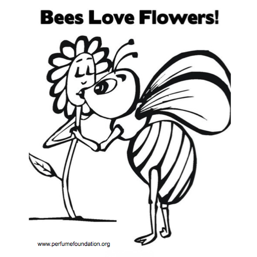 Bees love flowers, ask natural perfumes